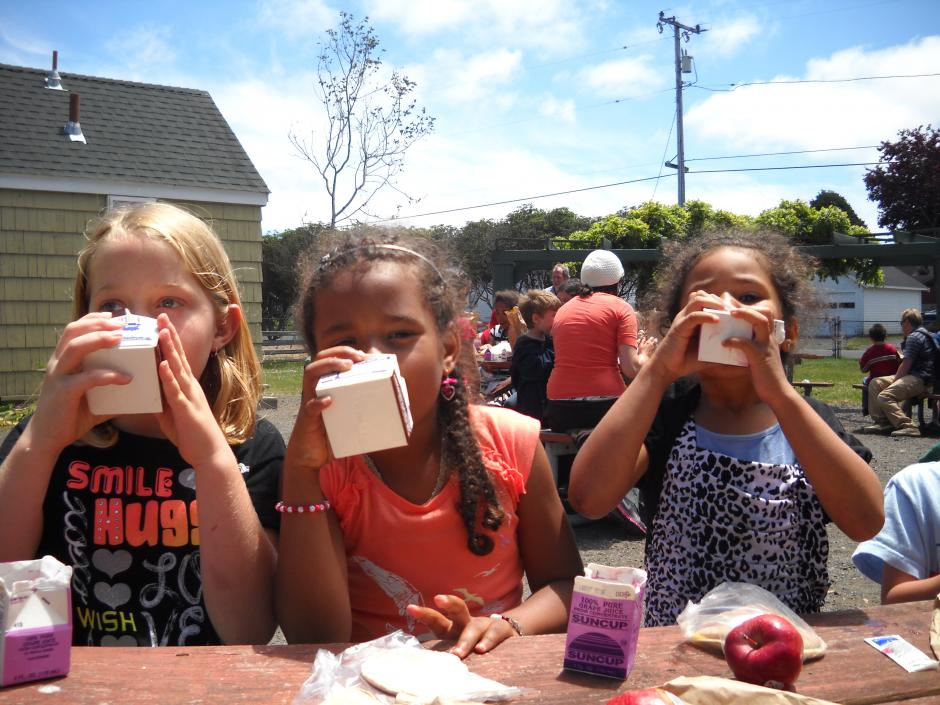 Children's Free Summer Lunch